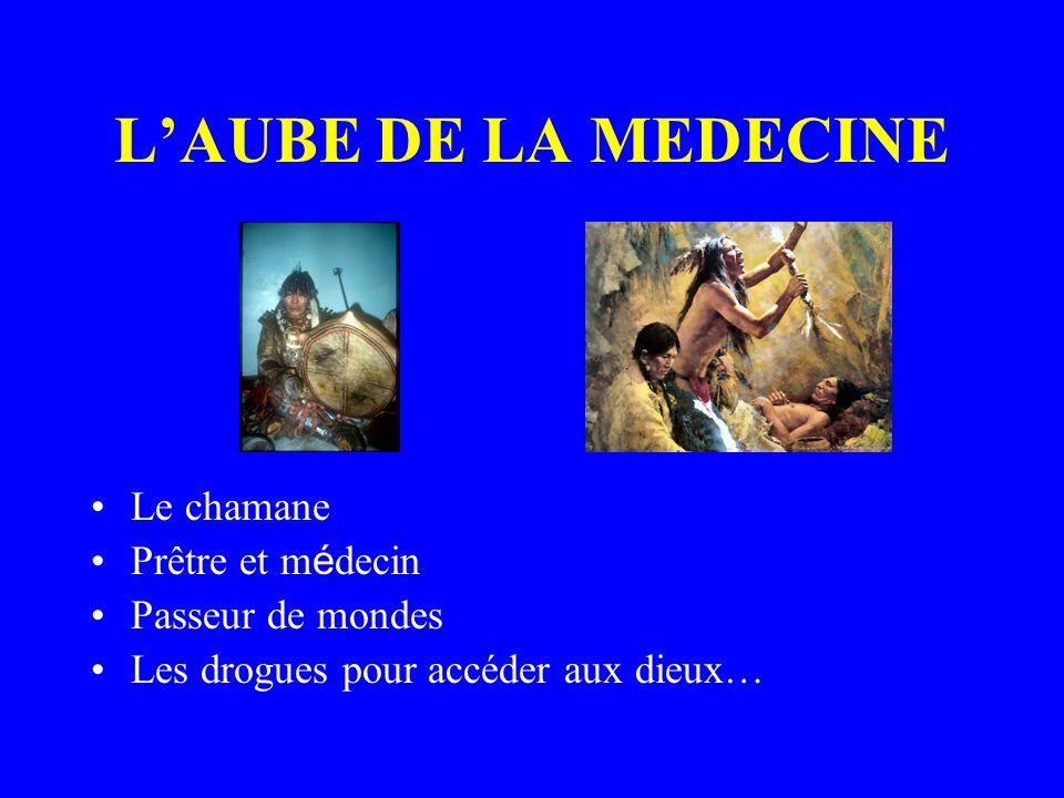 L'AUBE DE LA MEDECINE Le chamane Prêtre et médecin Passeur de mondes