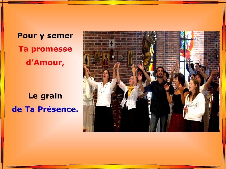 Pour y semer Ta promesse d'Amour, Le grain de Ta Présence.