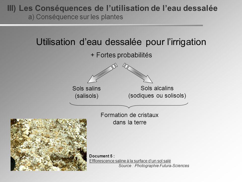 Utilisation d'eau dessalée pour l'irrigation