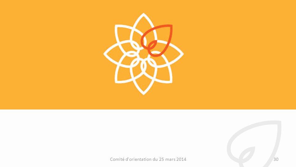 Comité d orientation du 25 mars 2014