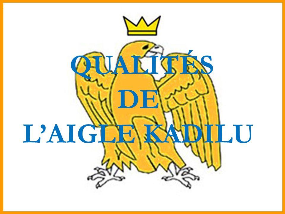 QUALITÉS DE L'AIGLE KADILU
