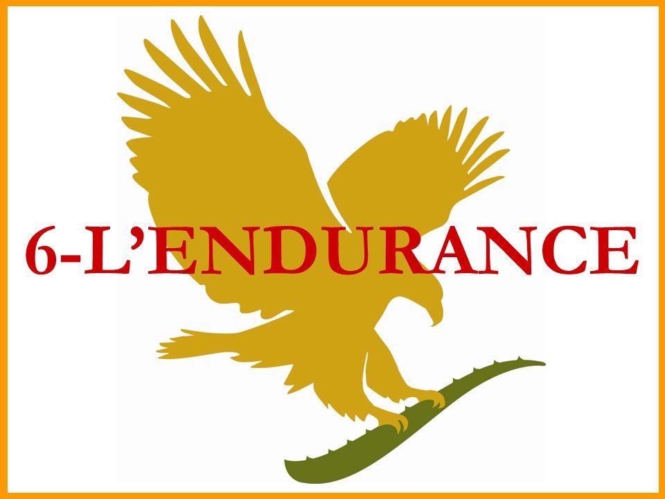 6-L'ENDURANCE