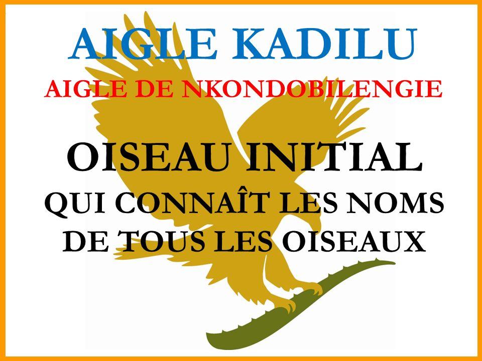 AIGLE DE NKONDOBILENGIE QUI CONNAÎT LES NOMS DE TOUS LES OISEAUX