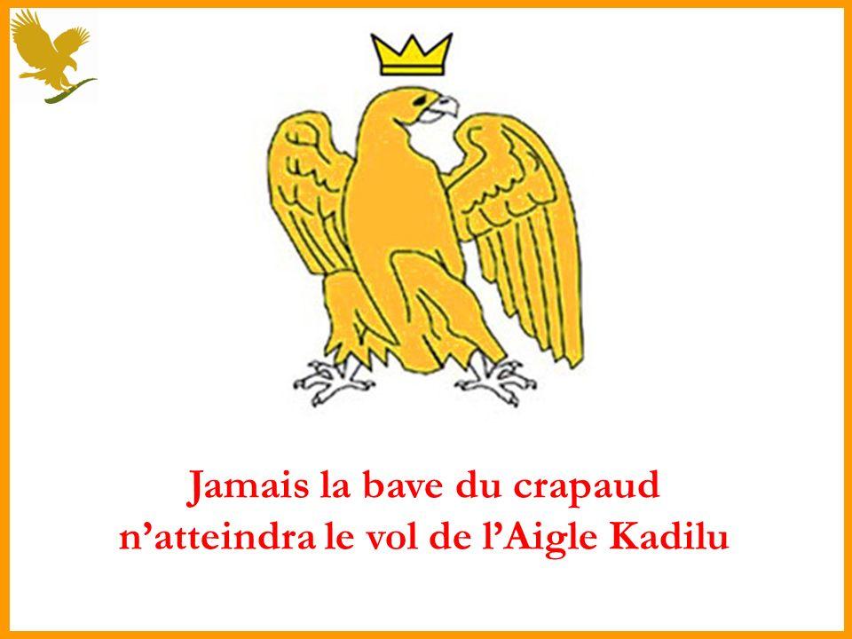 Jamais la bave du crapaud n'atteindra le vol de l'Aigle Kadilu