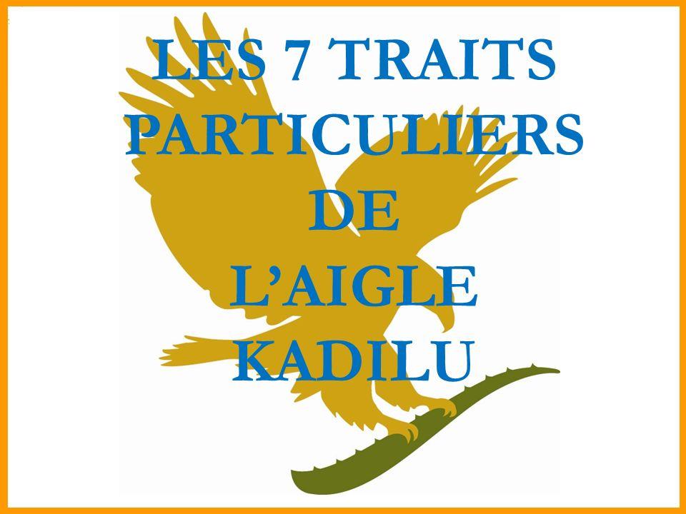 LES 7 TRAITS PARTICULIERS