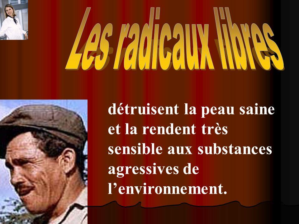 Les radicaux libres détruisent la peau saine et la rendent très sensible aux substances agressives de l'environnement.
