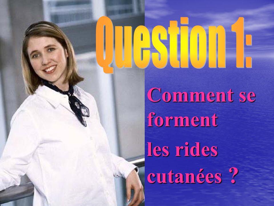 Question 1: Comment se forment les rides cutanées