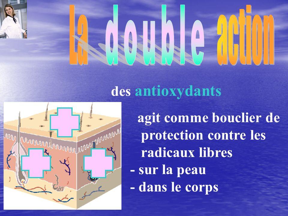 La action double. des antioxydants. agit comme bouclier de protection contre les radicaux libres.