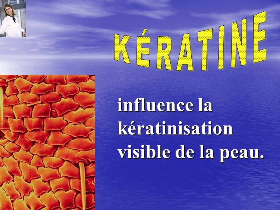 influence la kératinisation visible de la peau.