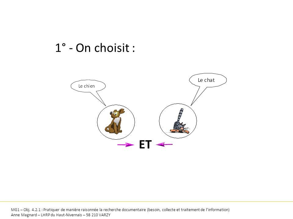 1° - On choisit : ET. MG1 – Obj. 4.2.1 : Pratiquer de manière raisonnée la recherche documentaire (besoin, collecte et traitement de l'information)