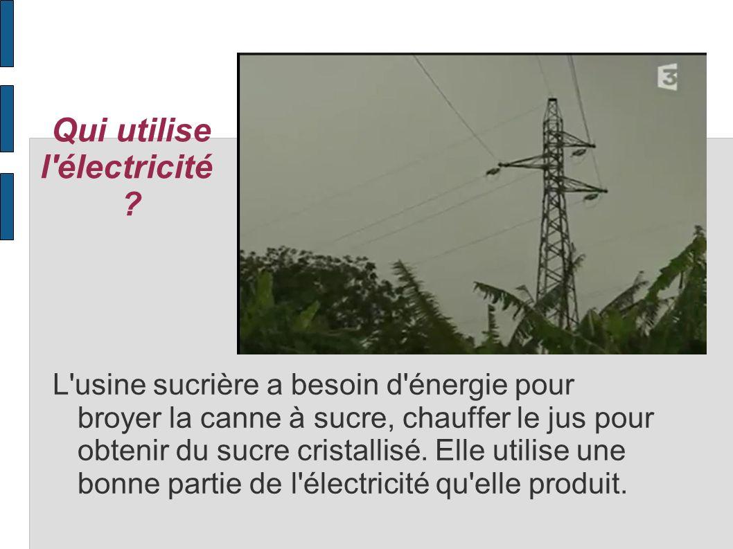 Qui utilise l électricité
