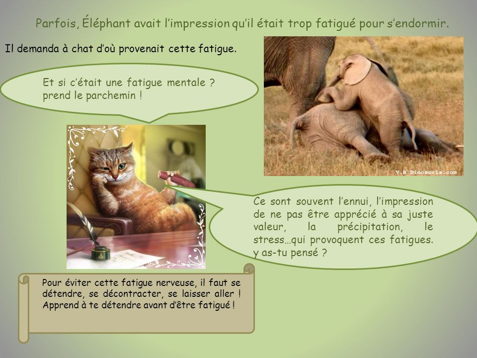 Parfois, Éléphant avait l'impression qu'il était trop fatigué pour s'endormir.