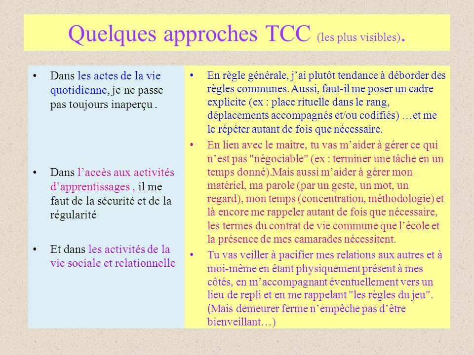 Quelques approches TCC (les plus visibles).