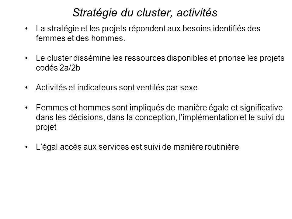 Stratégie du cluster, activités