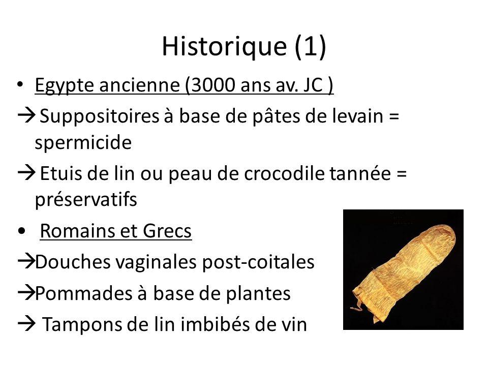 Historique (1) Egypte ancienne (3000 ans av. JC )