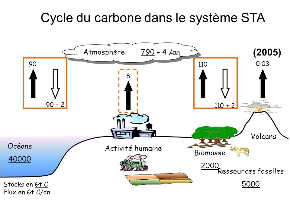 Cycle du carbone dans le système STA
