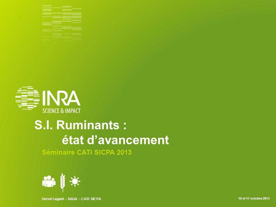 S.I. Ruminants : état d'avancement Séminaire CATI SICPA 2013