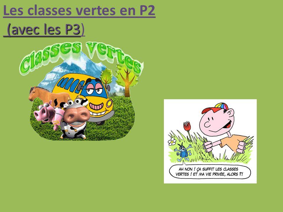 Les classes vertes en P2 (avec les P3)