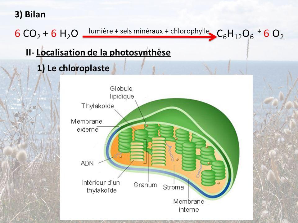 6 CO2 + 6 H2O lumière + sels minéraux + chlorophylle C6H12O6 + 6 O2