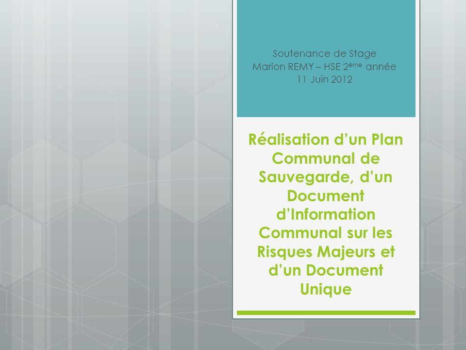 Soutenance de Stage Marion REMY – HSE 2ème année 11 Juin 2012