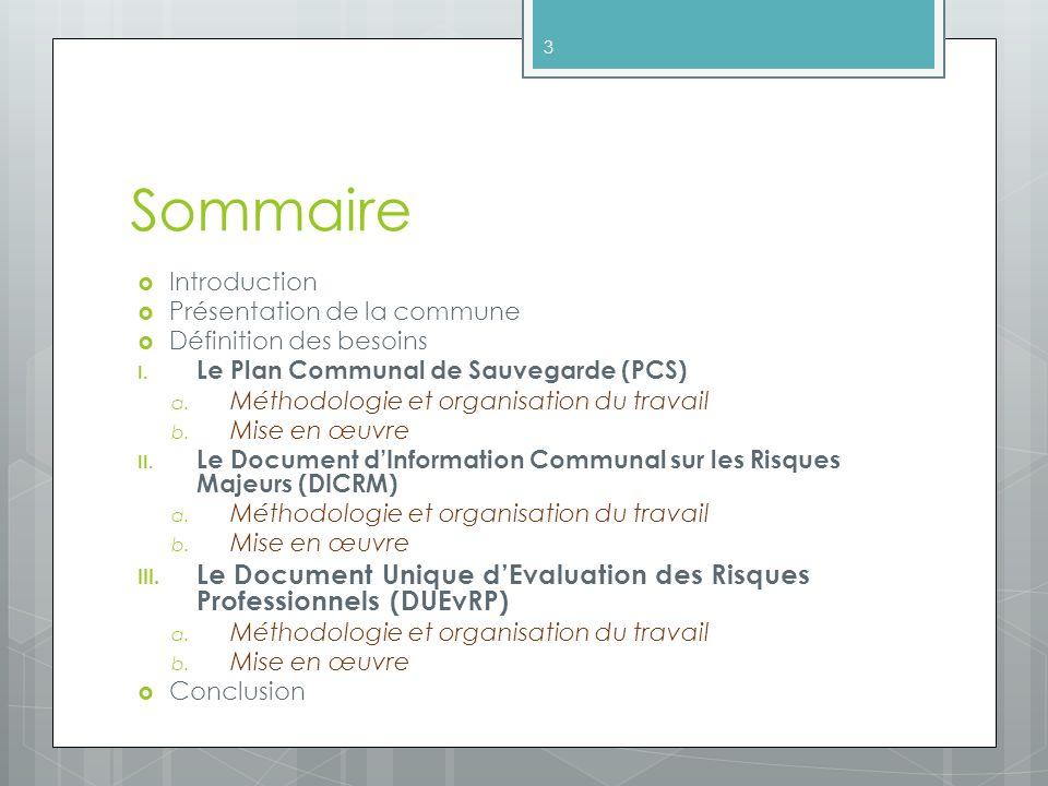 Sommaire Introduction. Présentation de la commune. Définition des besoins. Le Plan Communal de Sauvegarde (PCS)
