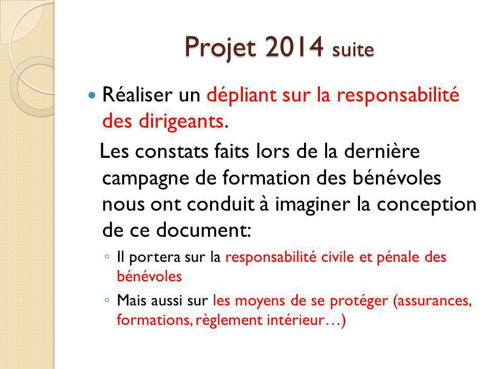 Projet 2014 suite Réaliser un dépliant sur la responsabilité des dirigeants.
