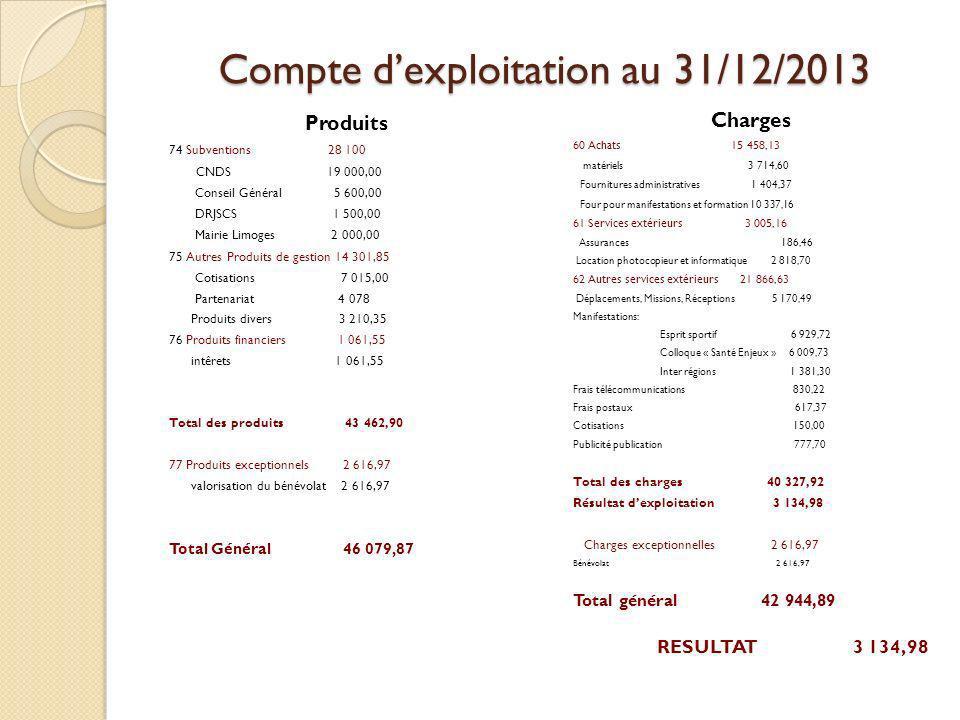 Compte d'exploitation au 31/12/2013