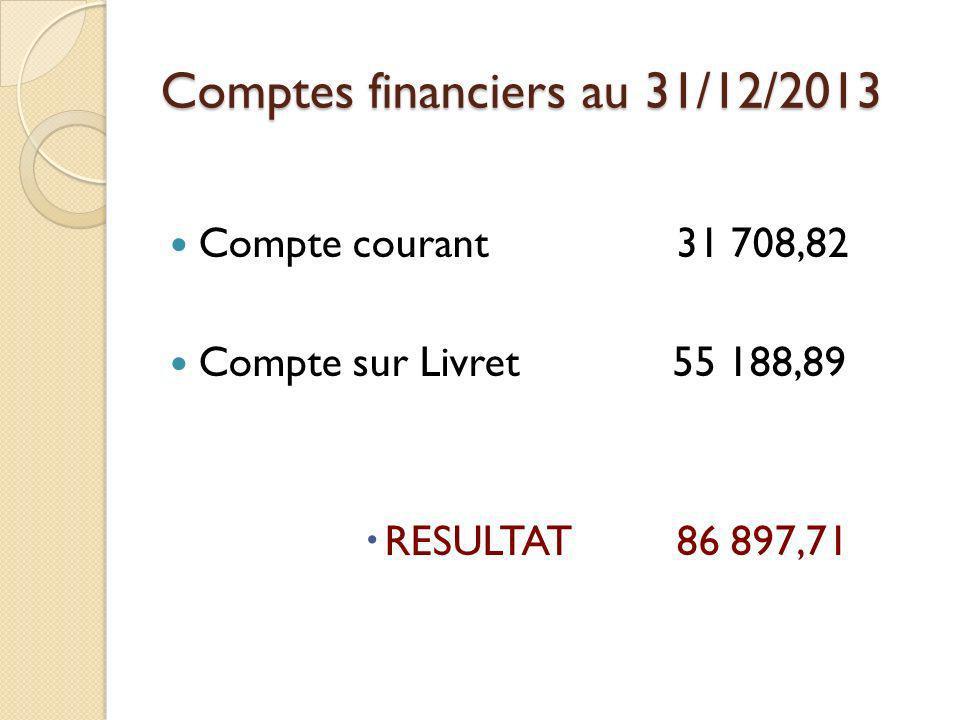 Comptes financiers au 31/12/2013