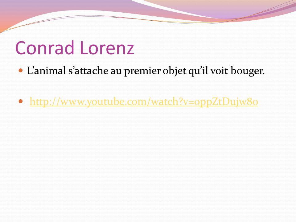 Conrad Lorenz L'animal s'attache au premier objet qu'il voit bouger.