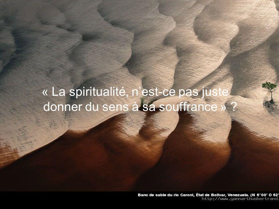 « La spiritualité, n'est-ce pas juste donner du sens à sa souffrance »
