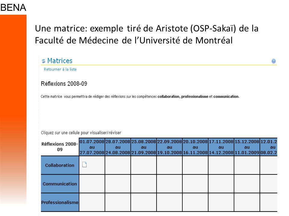 Une matrice: exemple tiré de Aristote (OSP-Sakaï) de la Faculté de Médecine de l'Université de Montréal