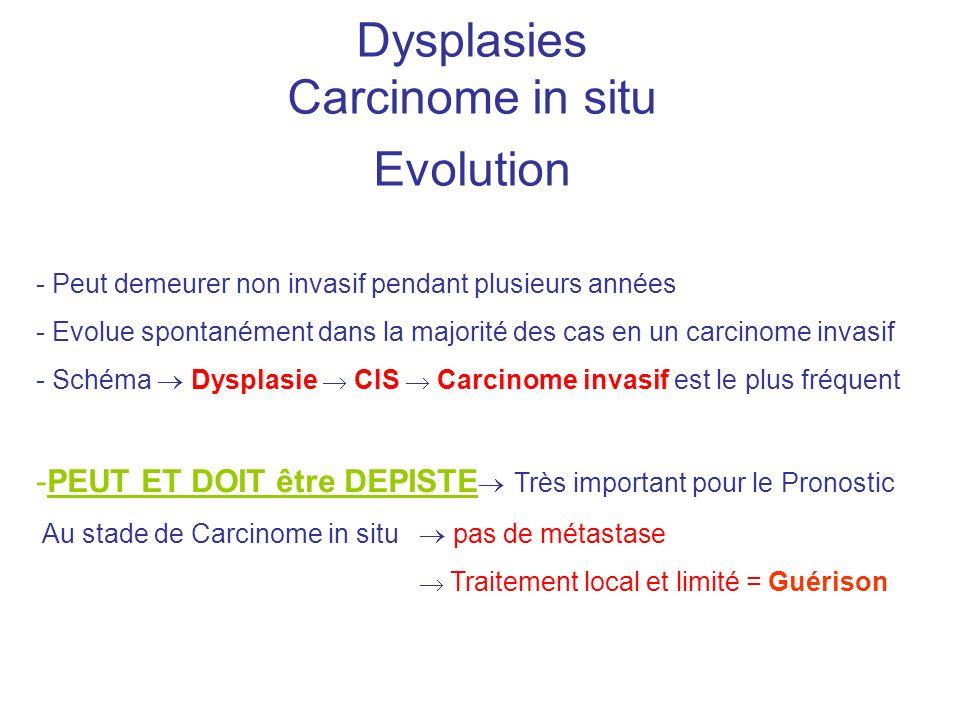 Dysplasies Carcinome in situ Evolution