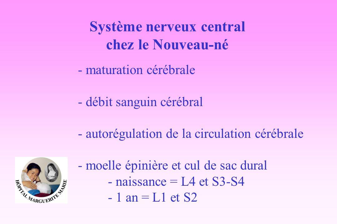 Système nerveux central chez le Nouveau-né