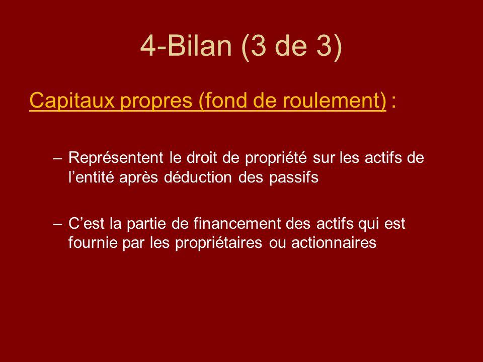 4-Bilan (3 de 3) Capitaux propres (fond de roulement) :