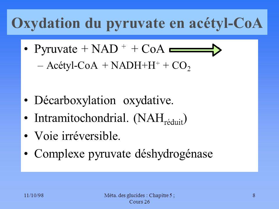 Oxydation du pyruvate en acétyl-CoA