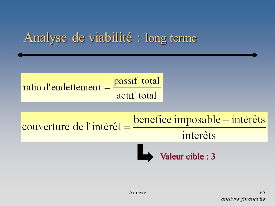 Analyse de viabilité : long terme