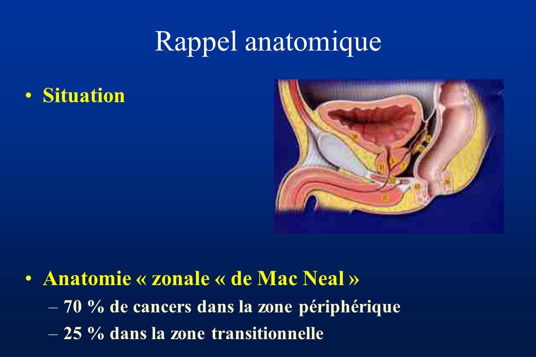 Rappel anatomique Situation Anatomie « zonale « de Mac Neal »