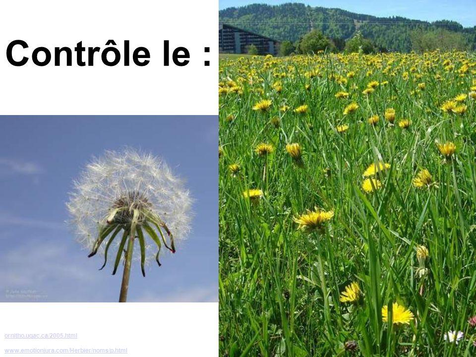 Contrôle le : ornitho.uqac.ca/2005.html
