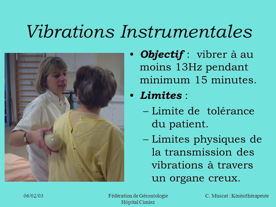 Vibrations Instrumentales