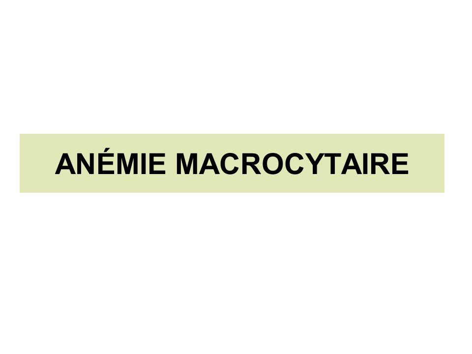 ANÉMIE MACROCYTAIRE