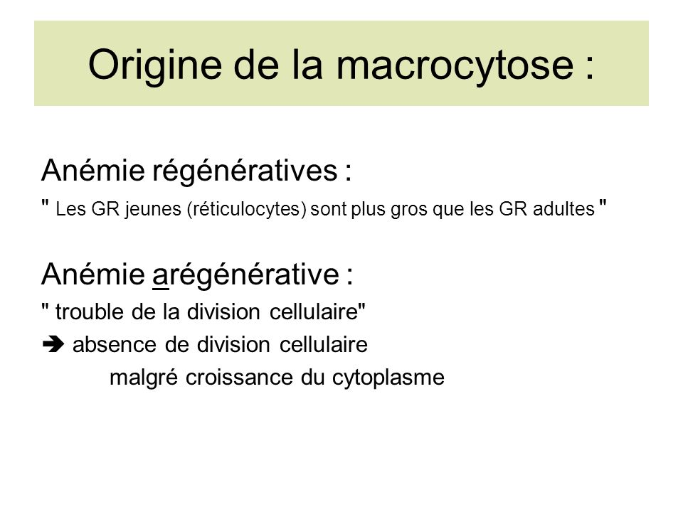 Origine de la macrocytose :