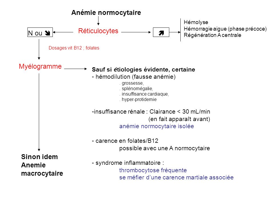 Anémie normocytaire Réticulocytes N ou   Myélogramme Sinon idem