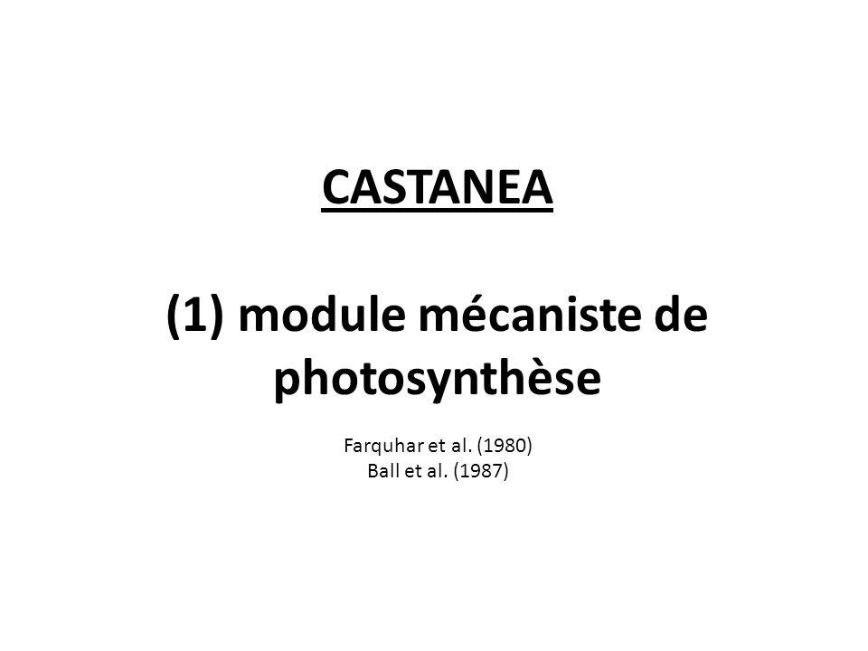 CASTANEA (1) module mécaniste de photosynthèse