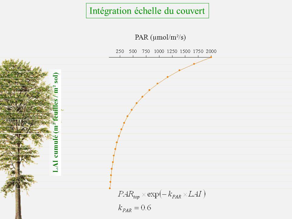 Intégration échelle du couvert
