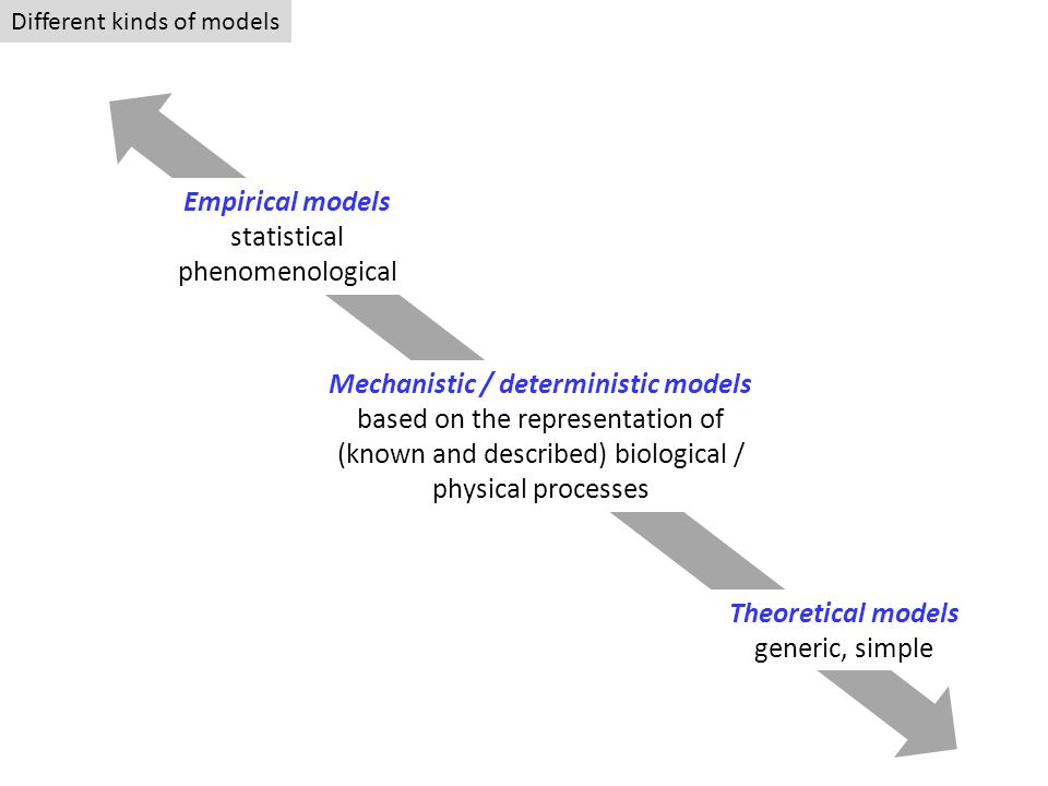 Mechanistic / deterministic models