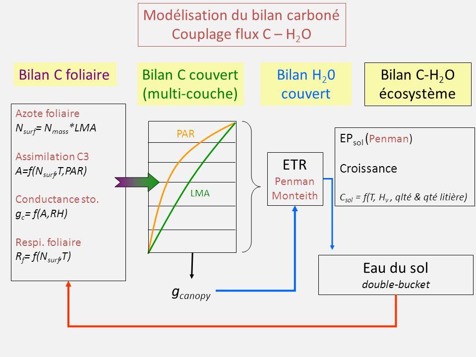 Modélisation du bilan carboné