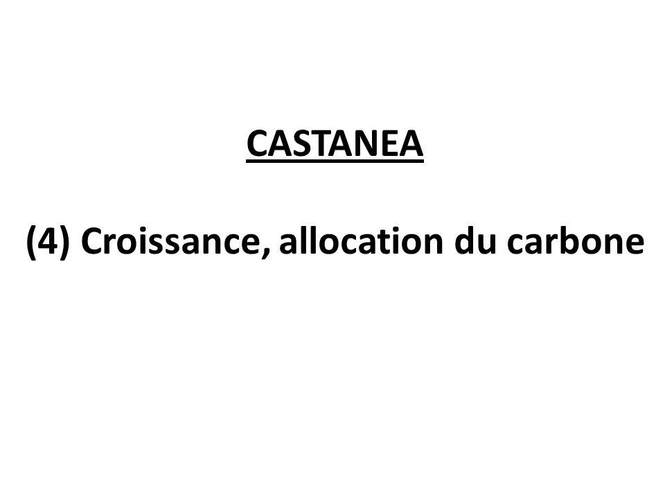 (4) Croissance, allocation du carbone