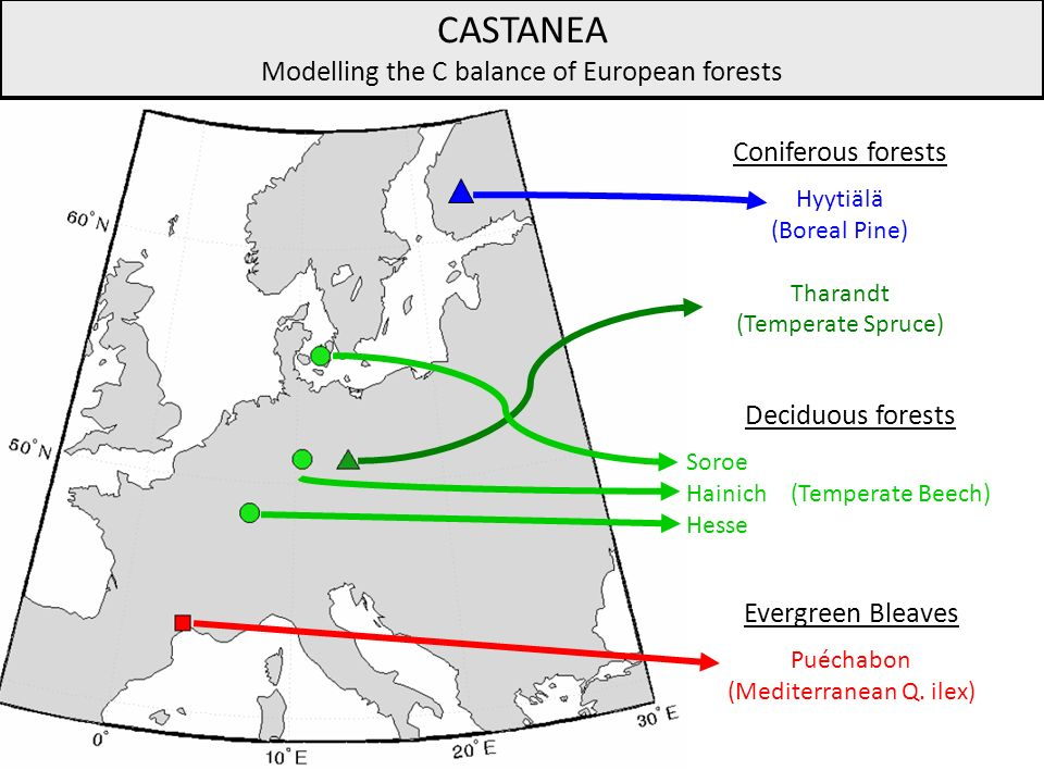 CASTANEA Modelling the C balance of European forests