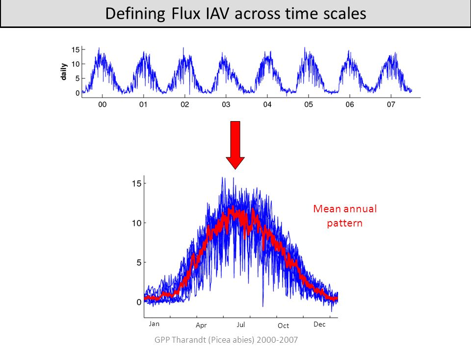 Defining Flux IAV across time scales