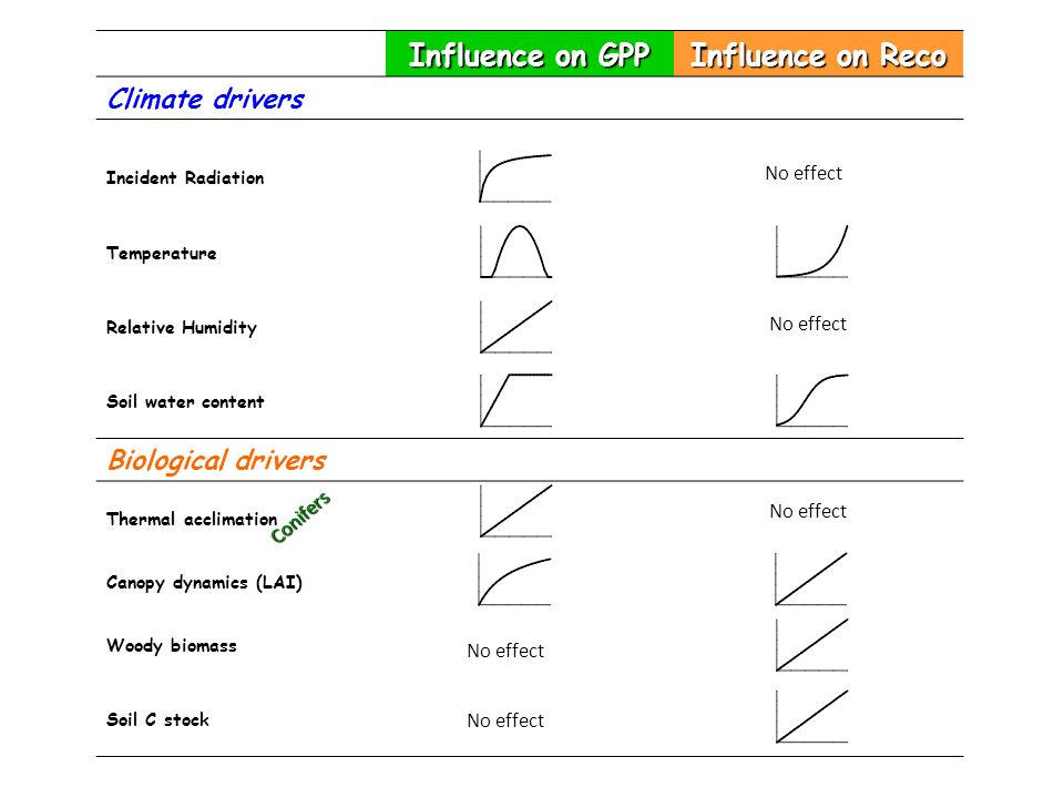 Influence on GPP Influence on Reco
